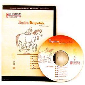 Picture of Chi Institute Equine Acupuncture CD (2 User) (CD06)