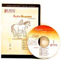 Picture of Chi Institute Equine Acupuncture CD (4 User) (CD04)