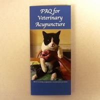 Picture of FAQ for Veterinary Acupuncture 50's (B09)
