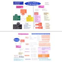 Picture of How to Make a TCVM Diagnosis Chart-2 Pages (CH10-3)