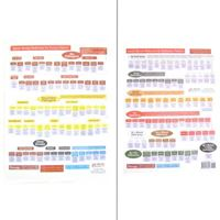 Picture of Quick Reference by Excess-Deficiency Chart-2 Pages (CH16)