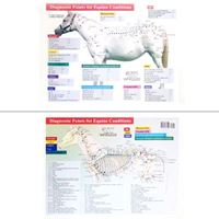 Picture of Xie's Diagnostic Points for Equine Conditions Chart-2 Pages (CH12)
