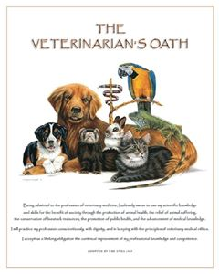 Picture of Dr. Ragona's Fine Art Print-Vet. Oath: Bird (PA06)