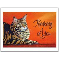 Picture of Sympathy Card 12 Pk-Thinking Cat (PA28)