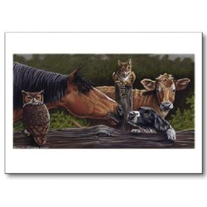 Picture of Vet Note Card 12 Pack - Horse (PA12)