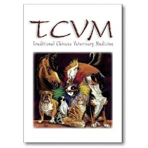 Picture of Vet Note Card 12 Pack - TCVM (PA09)