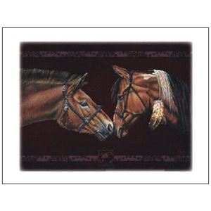 Picture of Vet Note Card 12 Pack-East Meet West (PA19)