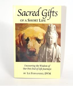 Picture of Sacred Gifts of a Short Life (BX20)