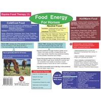 Picture of Food Therapy for Equine Chart (CH31)